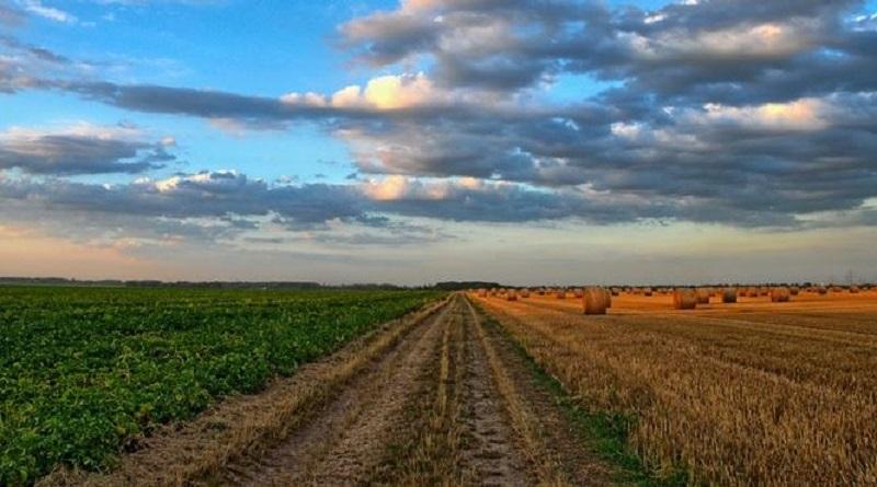 Открытие рынка земли: что это значит для экономики и простых украинцев Читайте подробнее: http://hub1news.com/%d0%be%d1%82%d0%ba%d1%80%d1%8b%d1%82%d0%b8%d0%b5-%d1%80%d1%8b%d0%bd%d0%ba%d0%b0-%d0%b7%d0%b5%d0%bc%d0%bb%d0%b8-%d1%87%d1%82%d0%be-%d1%8d%d1%82%d0%be-%d0%b7%d0%bd%d0%b0%d1%87%d0%b8%d1%82-%d0%b4%d0%bb/