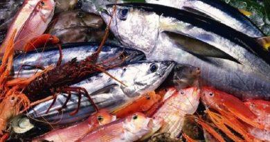 Названы виды рыбы, которые опасно есть Читайте подробнее: http://hub1news.com/%d0%bd%d0%b0%d0%b7%d0%b2%d0%b0%d0%bd%d1%8b-%d0%b2%d0%b8%d0%b4%d1%8b-%d1%80%d1%8b%d0%b1%d1%8b-%d0%ba%d0%be%d1%82%d0%be%d1%80%d1%8b%d0%b5-%d0%be%d0%bf%d0%b0%d1%81%d0%bd%d0%be-%d0%b5%d1%81%d1%82%d1%8c/