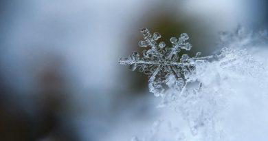 В Киеве выпал первый снег. Видео Читайте подробнее: http://hub1news.com/%d0%b2-%d0%ba%d0%b8%d0%b5%d0%b2%d0%b5-%d0%b2%d1%8b%d0%bf%d0%b0%d0%bb-%d0%bf%d0%b5%d1%80%d0%b2%d1%8b%d0%b9-%d1%81%d0%bd%d0%b5%d0%b3-%d0%b2%d0%b8%d0%b4%d0%b5%d0%be/