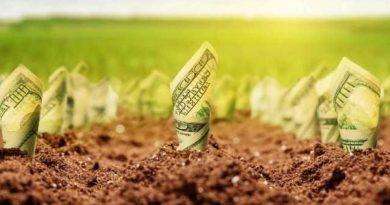 Рынок земли открывается: что приняла Рада и кто сможет покупать участки Читайте подробнее: https://hub1news.com/%d1%80%d1%8b%d0%bd%d0%be%d0%ba-%d0%b7%d0%b5%d0%bc%d0%bb%d0%b8-%d0%be%d1%82%d0%ba%d1%80%d1%8b%d0%b2%d0%b0%d0%b5%d1%82%d1%81%d1%8f-%d1%87%d1%82%d0%be-%d0%bf%d1%80%d0%b8%d0%bd%d1%8f%d0%bb%d0%b0-%d1%80/