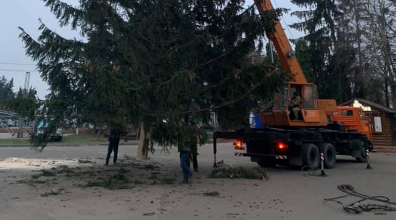 Сэкономили на празднике: Главную площадь Дубно Ровенской обл. украсит елка с кладбища