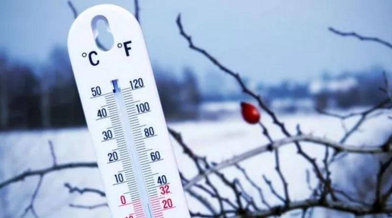 Казахстан накрыли аномальные морозы: животные замерзают на ходу. Пугающие кадры.