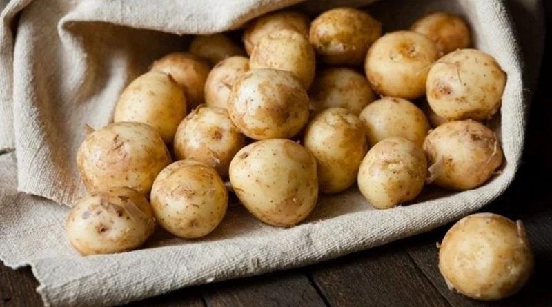 Украинская молодая картошка дороже израильской: фермеры не будут опускать цены