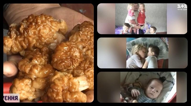 В Черниговской области четверо детей отравились грибами: 7-месячный мальчик и 5-летняя девочка умерли