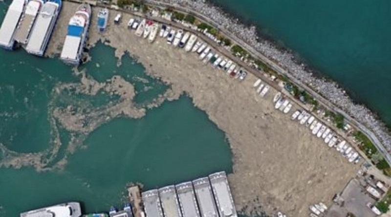 Слизь из водорослей покрыла морское побережье в Турции и угрожает экологии Черного моря