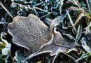 Температура воздуха снизится: в Украине объявили I уровень опасности